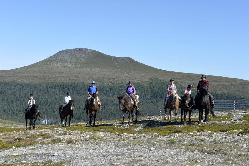 Horseriding in Idre Fjäll, Dalarna