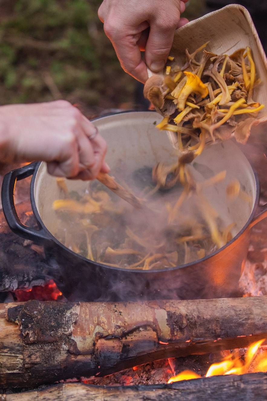 Cooking mushrooms over an open fire. One hand stirring the pan while another hand tips in the mushrooms in the pan