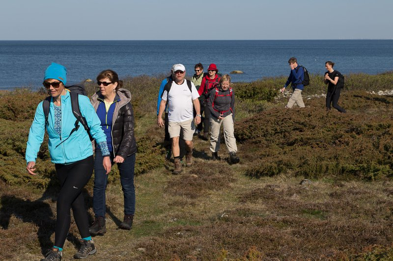 Steninge coastal hike, Halland