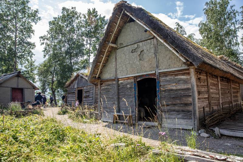 Wikingerdorf Birka