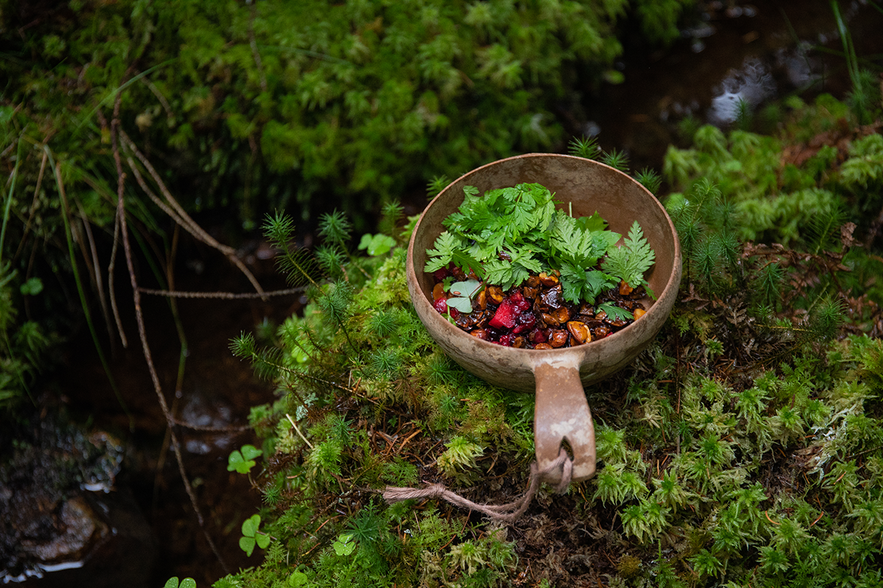 Foraged berries and greens in a wooden bowl or kåsa  in the forest