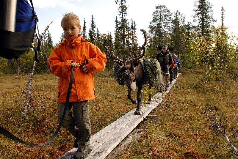 Walking with reindeers, Wildnisdorf