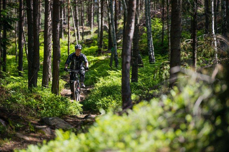 En bicicleta por las montañas suecas