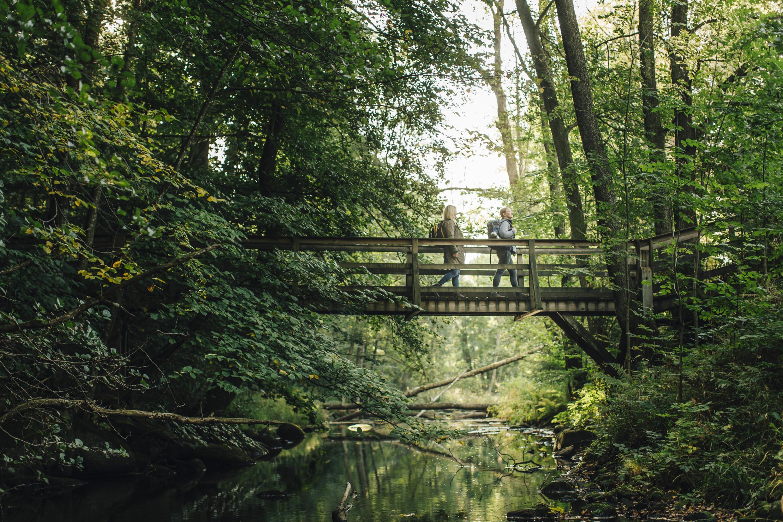 Hiking in Sweden | Visit Sweden